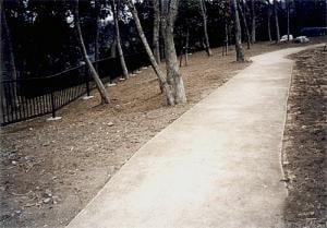 公園・写真7